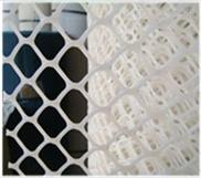 现货供应绿色PE养殖网 塑料平网 塑料筛网